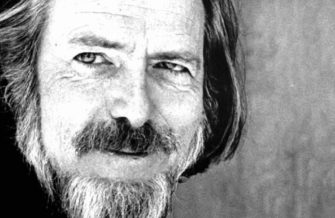 Philosopher Alan Watts on the difference between money and wealth